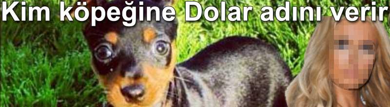 Kim köpeğine dolar adını verir Paris Hilton