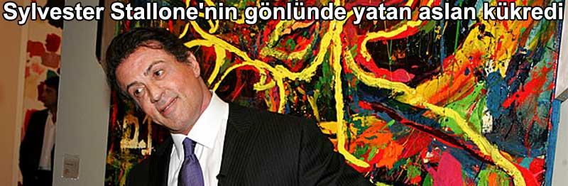 Sylvester Stallone'nin gönlünde yatan aslan kükredi | Yazan: Belgin Elçioğlu Belgin Invictus